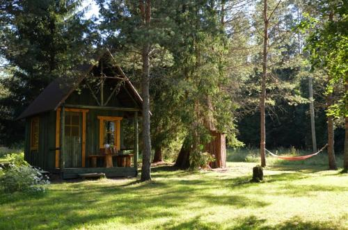 Little Forest House near the river Jagala